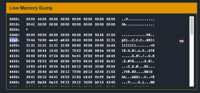 how to use buffer overflow to bypass password